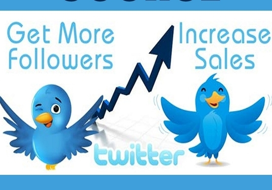 I will Do Professional Twitter Marketing for 30 days