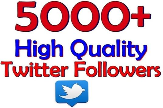 I will Add 250 Real And Permanent Twitter Followers