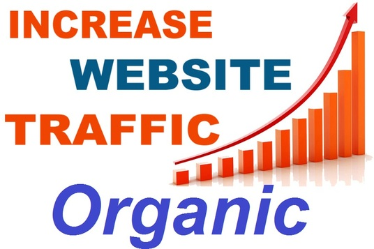 I will Boost Ranking by sending 7000 Organic web traffic to Your WebSite