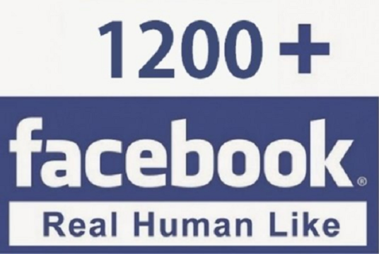 I will Add 1200 Plus Real  Facebook Likes
