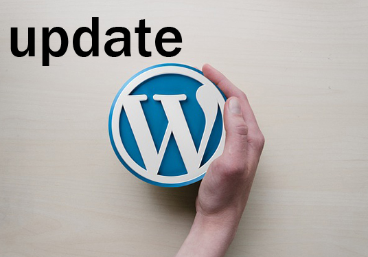 I will manually update WordPress to latest version without breaking your website