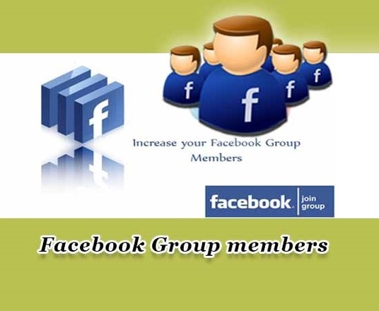 I will provide 1000 Facebook Group Members