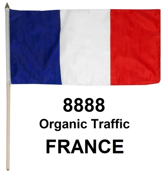 I will Provide 8080 Real Organic Traffic from France