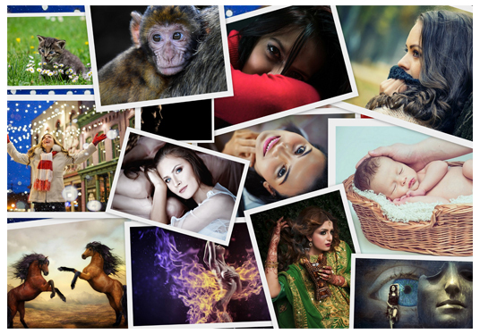 I will make a beautiful photo collage of your pics, images, photos