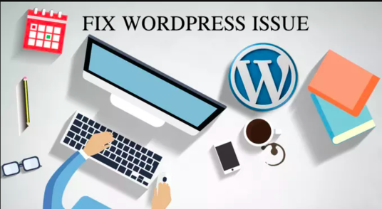 I will fix your Wordpress related any error