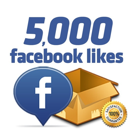 I will add 5000 Facebook likes to your page