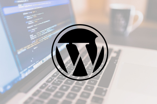 I will fix any kind of WordPress error and css related issue