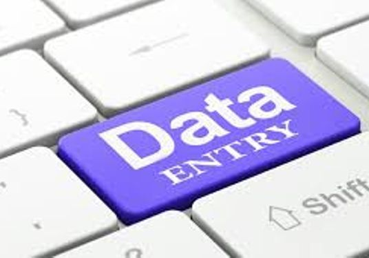 I will Do Data Entry Into Excel