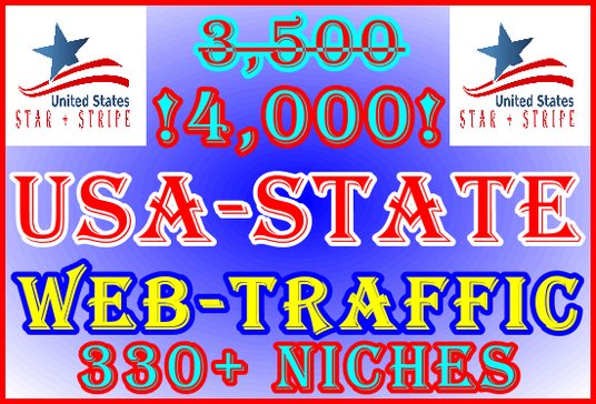 I will Deliver 4,000 State Visitors | 334 Niche Category Targets | AdSense Safe | USA Geo-targete