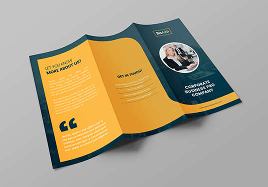 I will Design Professional Trifold Brochure & Handout