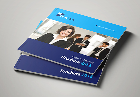 I will Design Square Brochure, Booklet Professionally
