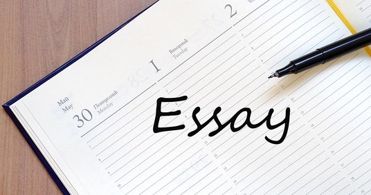 I will Provide Essay Writing Services