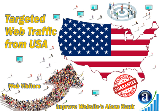 I will send American web visitors targeted organic traffic from USA