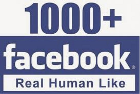 I will give 1000 non drop facebook fanpage likes
