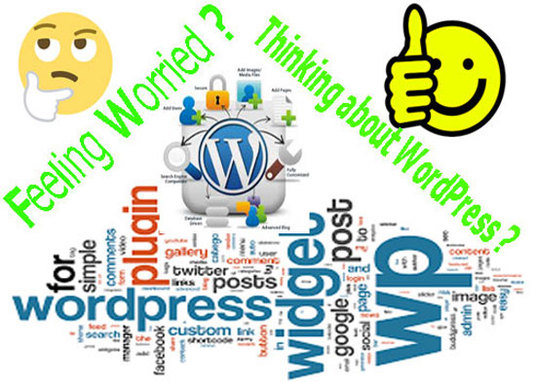 I will install WordPress, Theme and Plugins