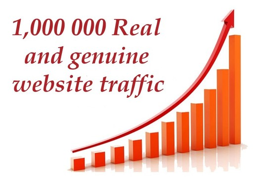 I will provide Real 1,000 000 Website Traffic Worldwide
