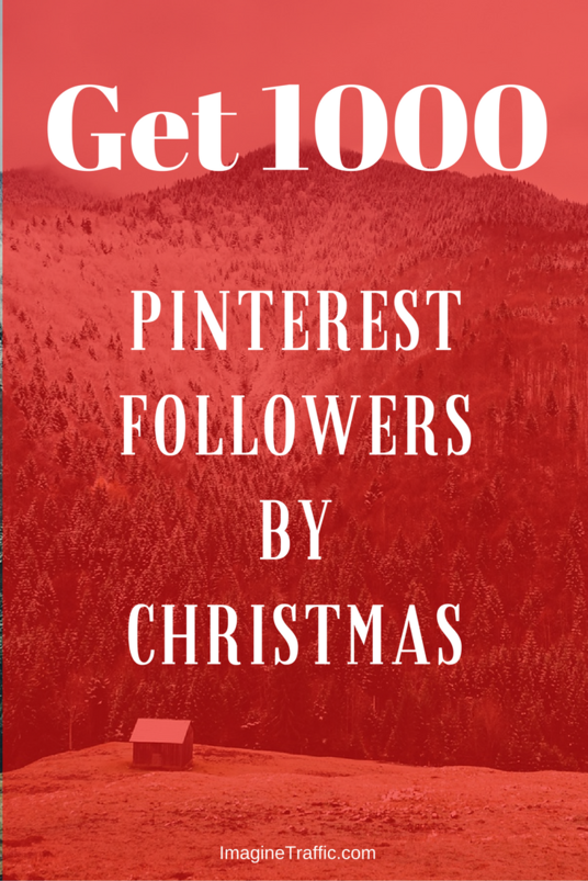I will provide you  with 1000 Pinterest followers