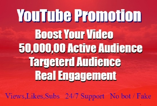 I will build viral YouTube promotion