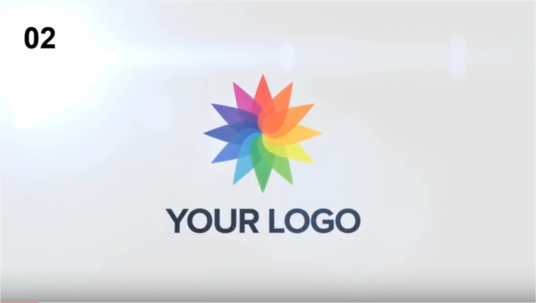 I will create a stunning logo reveal video -15 samples to choose from