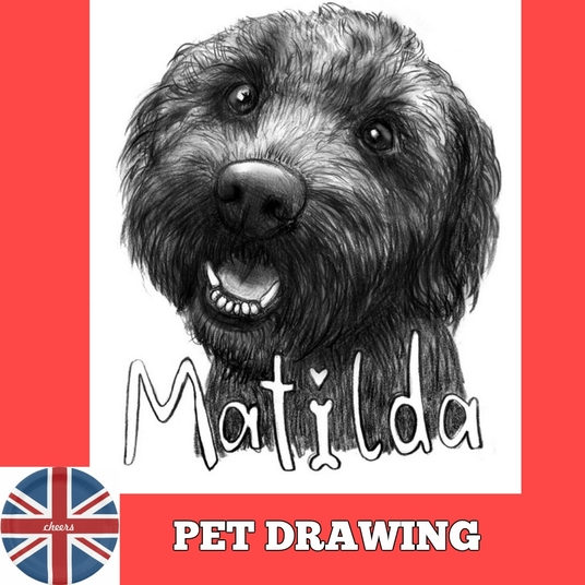 I will draw a sketch of your pet