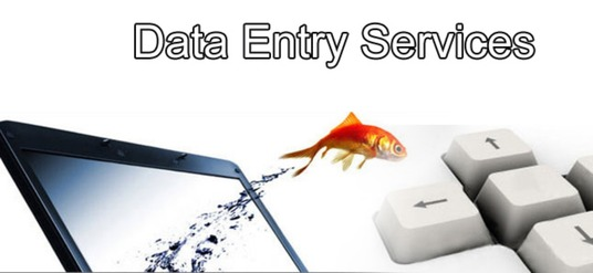 I will do Data Entry for you