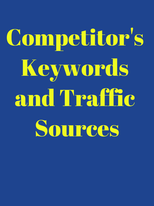 I will create a report on your competitor's keywords and traffic sources