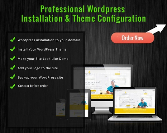 I will install a wordpress theme like demo
