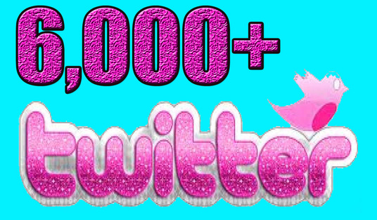 I will Give you  Permanent 6000 Twitter Followers
