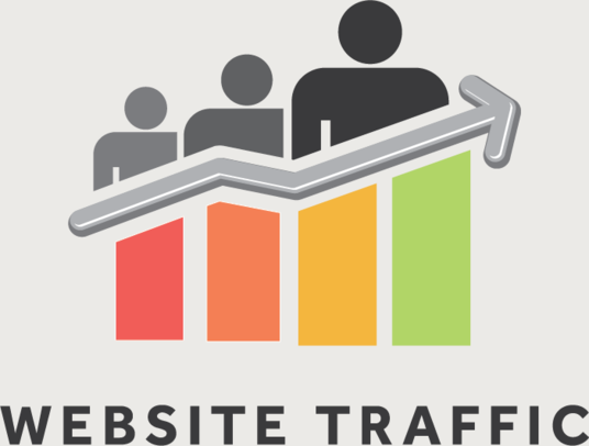 I will Drive Unlimited Real Web Traffic For  1 Month To Your Website