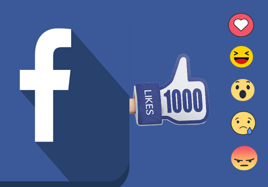 Provide you 1000 Facebook EMOTICONS Post Likes