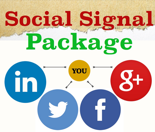 I will Provide 1000+ Social Signals to Boost your Google Ranking