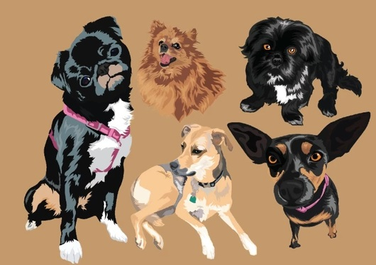 Draw A Vector Portrait of Your Pet