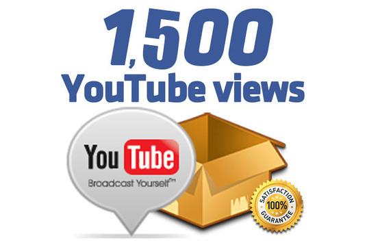 I will provide 1500 views on any YouTube Video