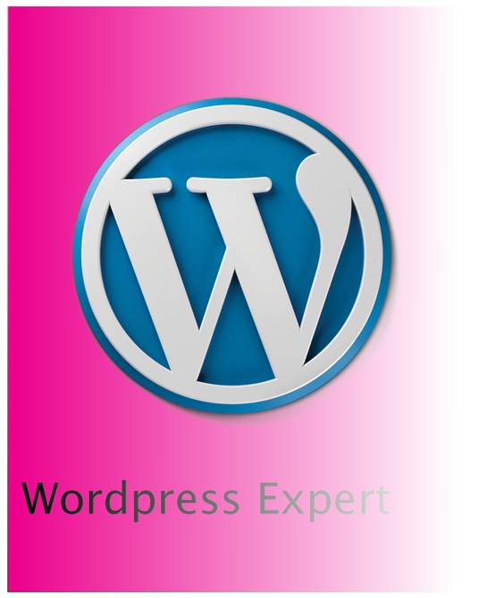 I will Fix Wordpress Website Issues Or Wordpress Errors In 24 Hrs