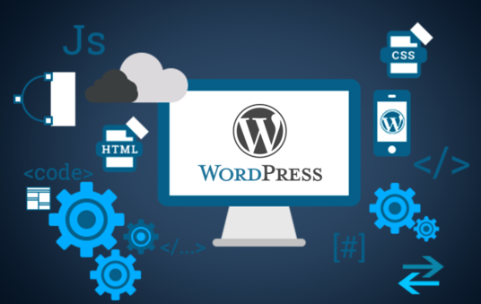 I will build a PRO WordPress Website or Blog