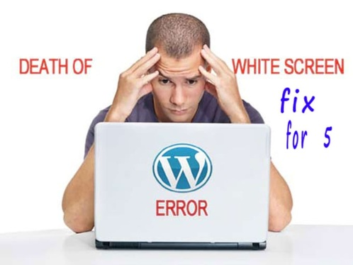 fix wordpress issues and php error