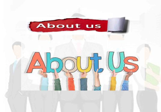 I will write a superb about us page