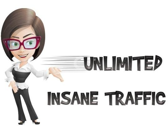 I will GIVE YOU UNLIMITED HUMAN TRAFFIC BY Google Twitter Youtue  for 30 days