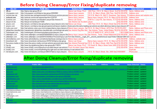 I will Do 5 Citations Cleanup, Error Fixing, Duplicate Removing
