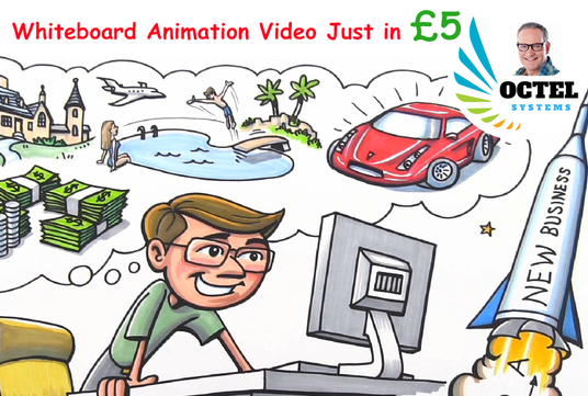 I will create a professional whiteboard or 2D animation video