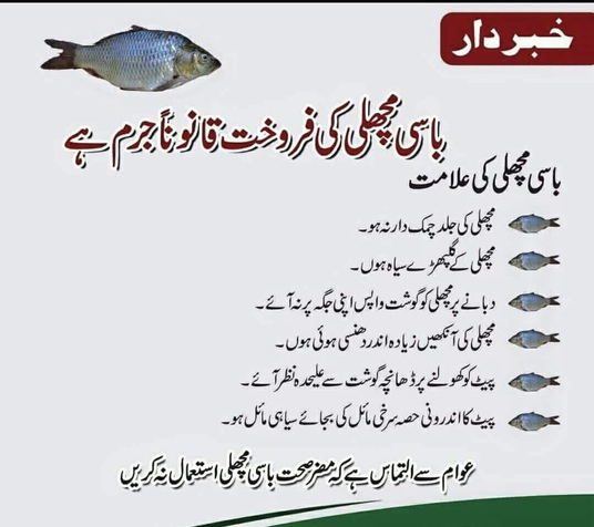 I will type one page in Urdu for publishing in Newspapers