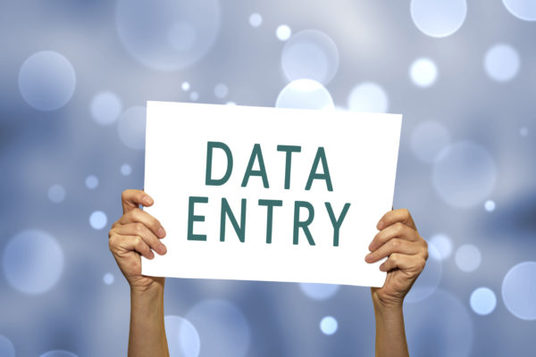 I will Do Data Entry And Data Entry Based Jobs