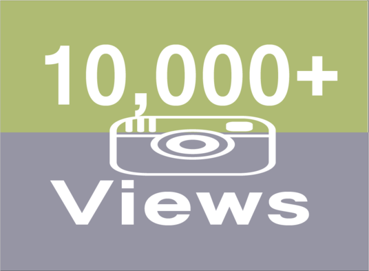 I will Provide you 10,000 High Quality Instagram Video Views
