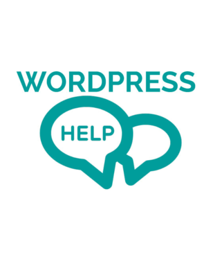 Provide Premium Wordpress Support Services