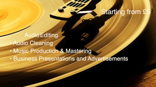 I will provide Professional Studio Audio Editing for your Project