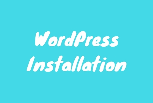 I will install and setup  WordPress blog or website on your server hosting