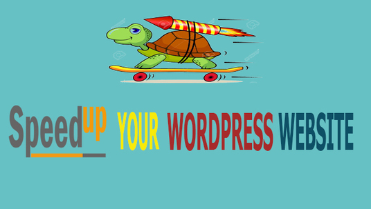 I will fix and speed up your WordPress website