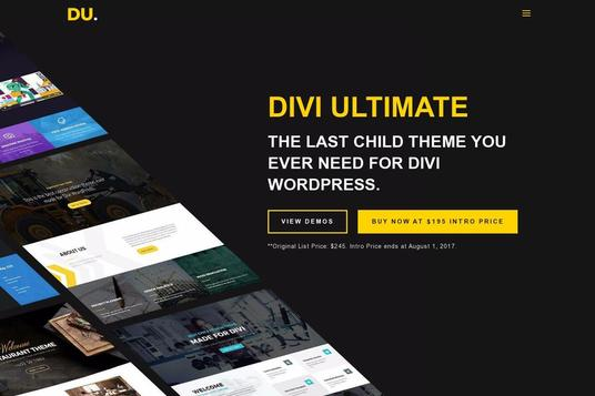 Customize Your Divi Theme as your requirement