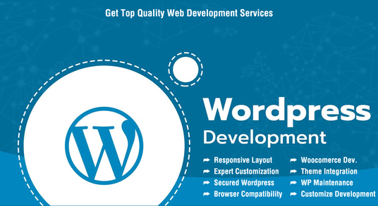 I will Make a special full-featured WordPress website for you