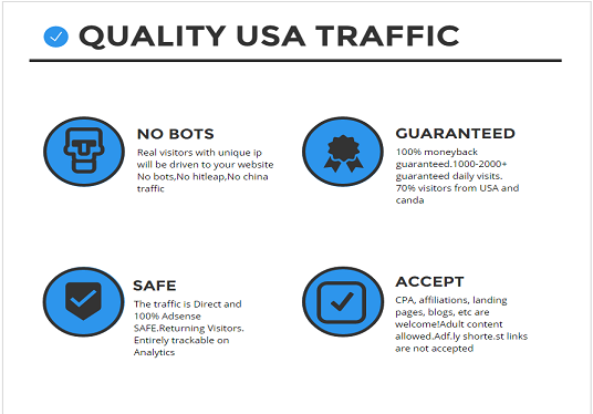 I will provide 10000 quality USA traffic to your website